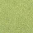439_Moss